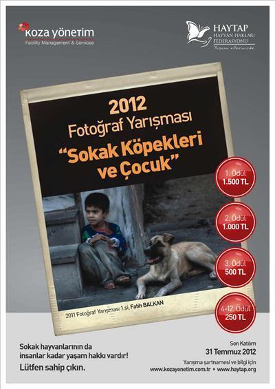 Haytap 2012 Sokak Hayvanları Fotoğraf Yarışması