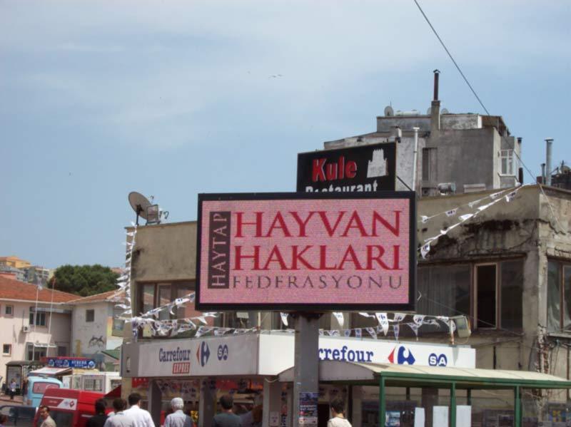 Haytap  Görselleri Sinop'ta Işıklı  Panolarda