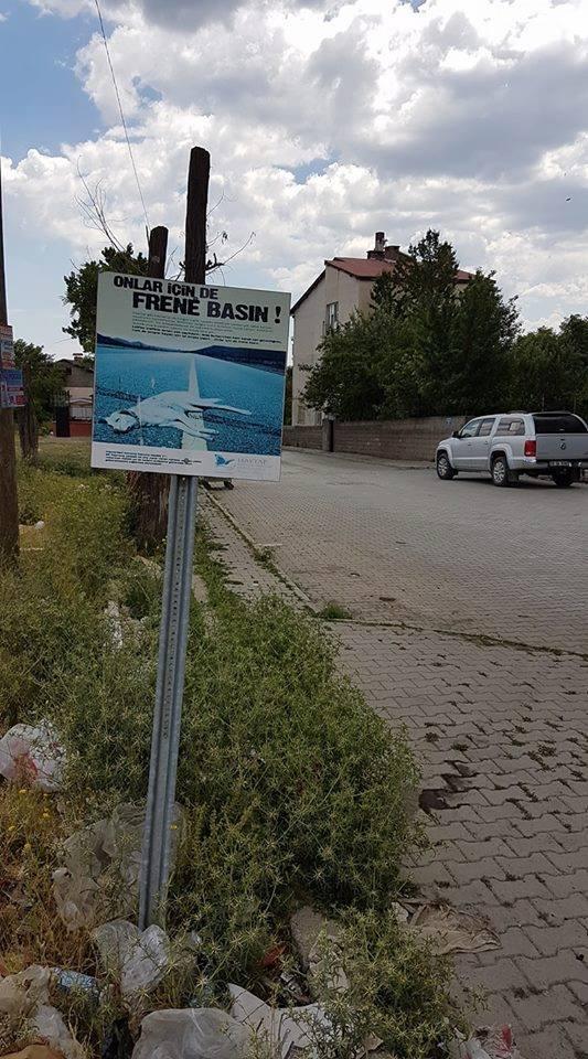 HAYTAP Afişleri Bitlis Sokaklarında!