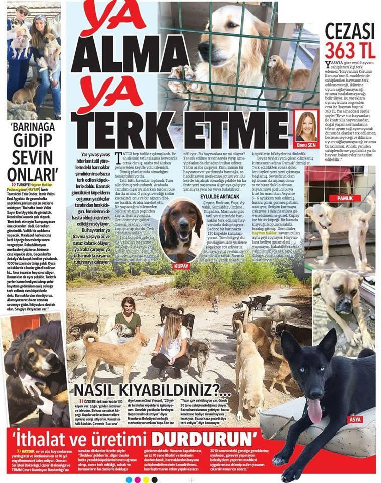 Ya Alma Ya Terk Etme  ! - Haytap Hürriyet Gazetesinde Yine Tam Sayfa