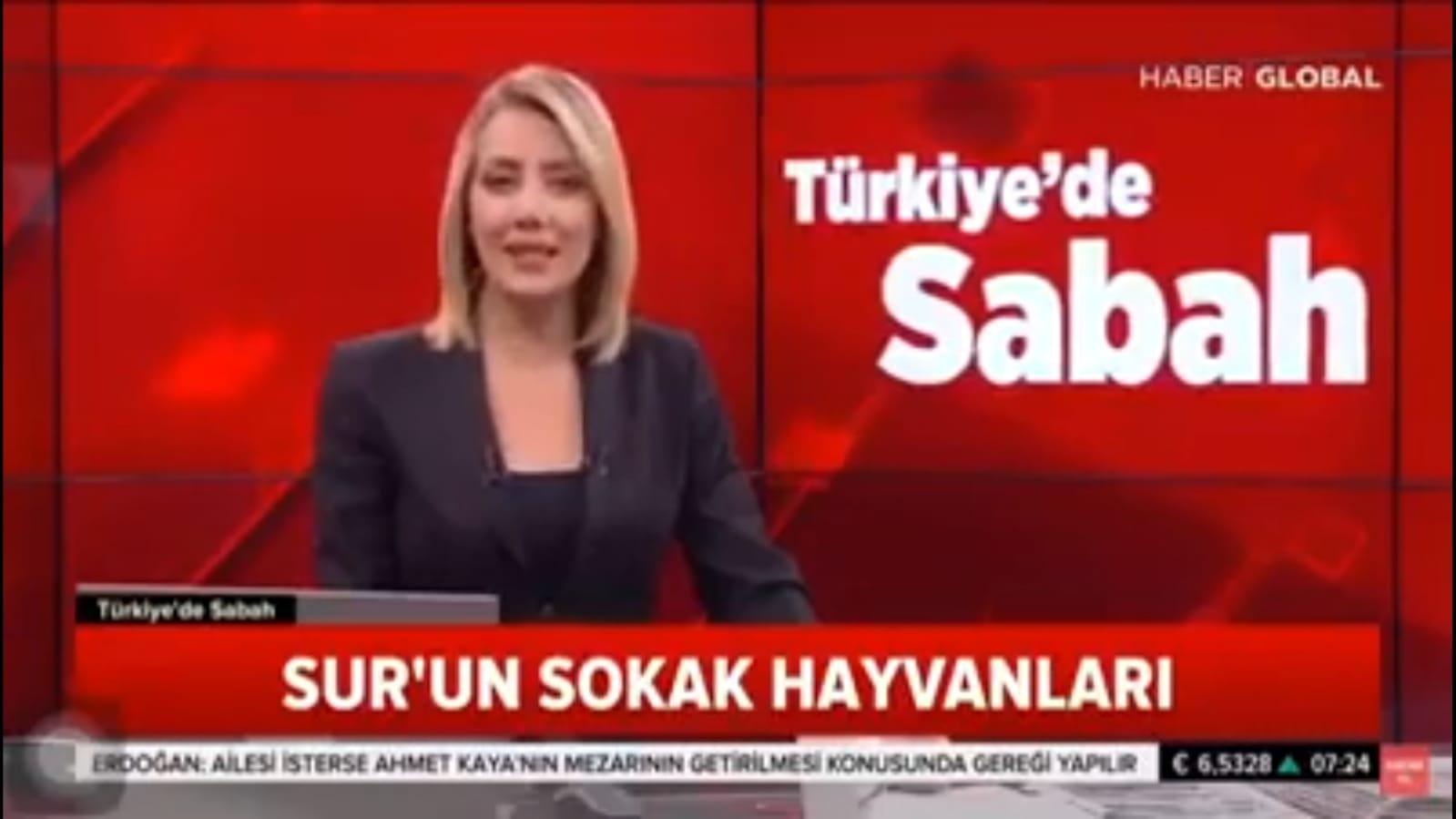 Haytap Diyarbakır Sur bölgesinde