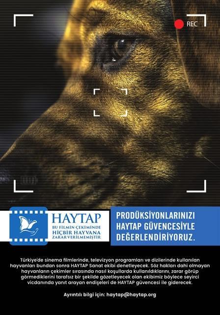 Haytap Sanat : Hayvanların Kullanıldığı Film Sektöründe Haytap Denetimi