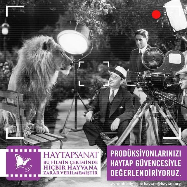 TV DİZİLERİNDE VE FİLMLERİNDE HAYTAP VE HAYTAP DENETİMİ