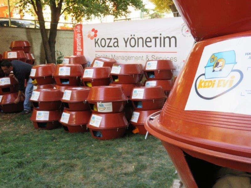 2016 Haytap Takvimleri Ankara'da Kedilere Yuva Oldu