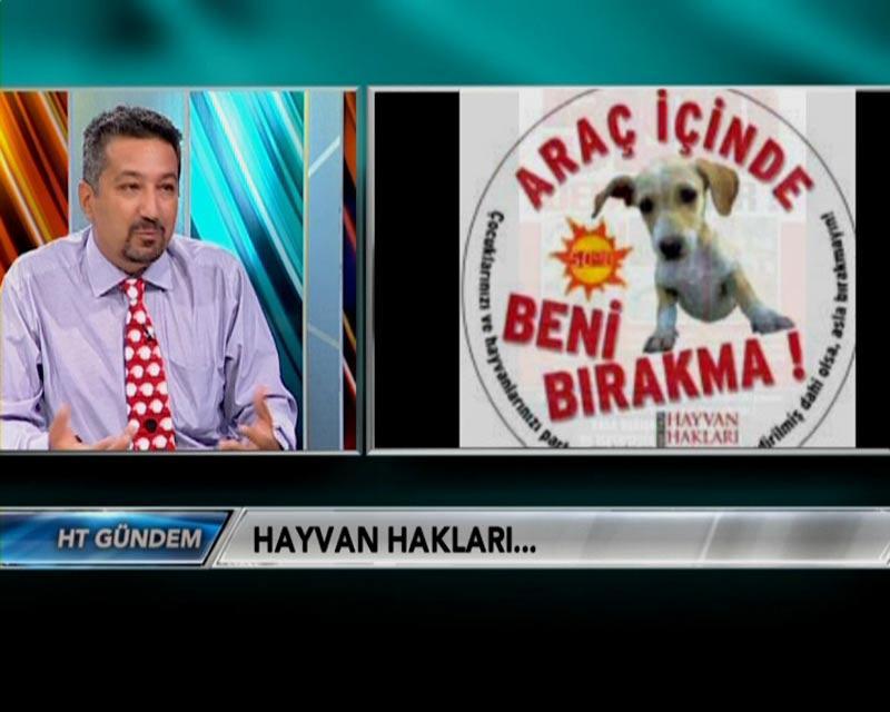 Baştan Sona Hayvan Hakları  Bloomberg  -2011