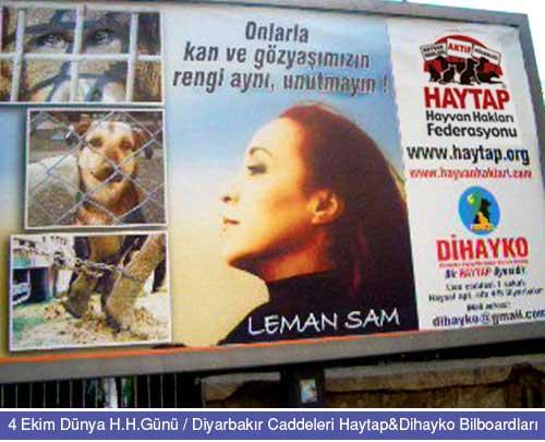 HAYTAP Kampanyası Diyarbakır Caddelerinde !