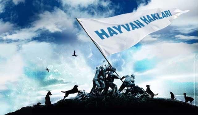 BASINDA HAYTAP