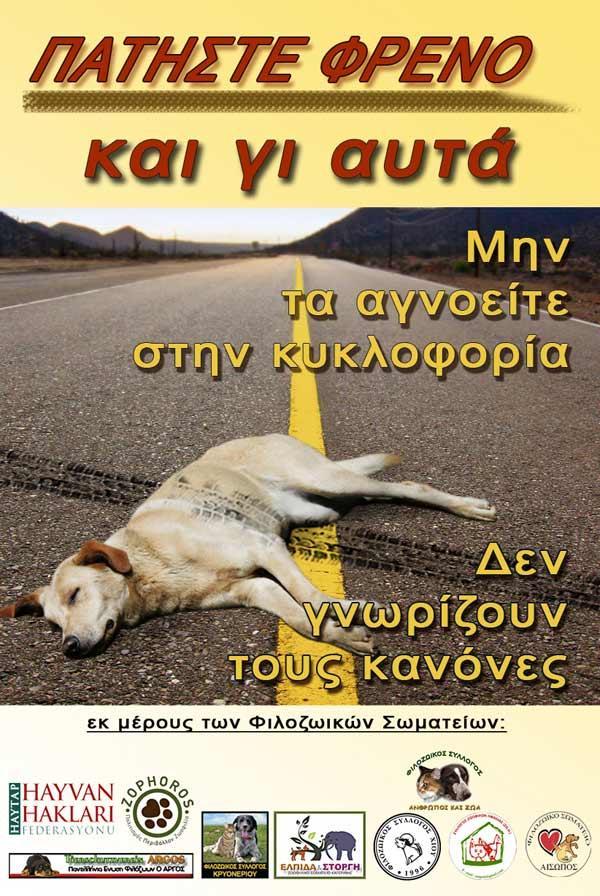 Sakız Adası'nda ( Yunanistan) Haytap Gö rselleri !  ????????? ??????