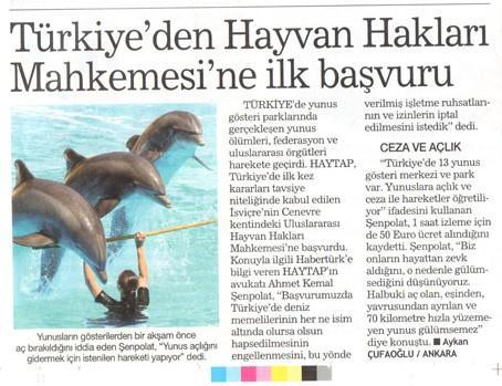 Türkiye'den Hayvan Hakları Mahkemesine İlk Başvuru - Habertürk