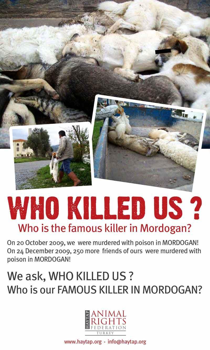 Who Killed Us ?