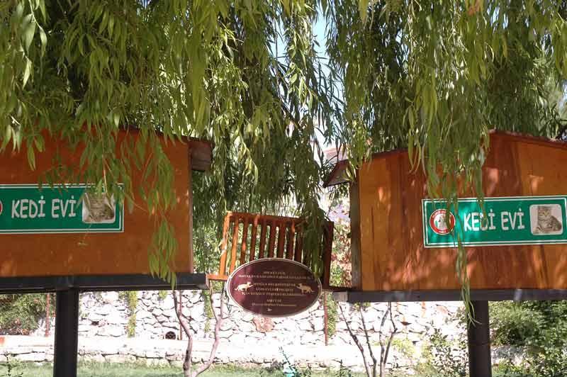 Muğla Belediyesi Kedi Evleri