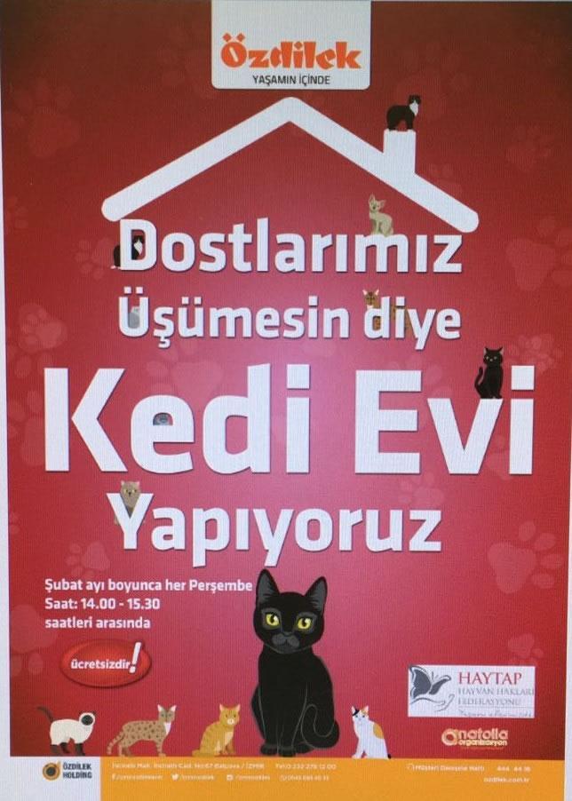 İzmir Özdilek AVM  ve Haytap İşbirliği ile Kedi Evi Etkinliği