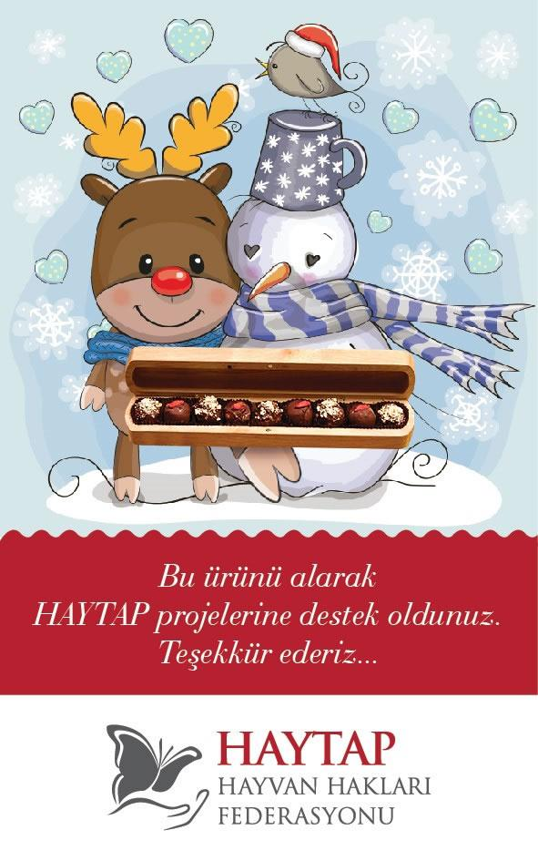 How Can You Support Haytap Projects in The New Year?