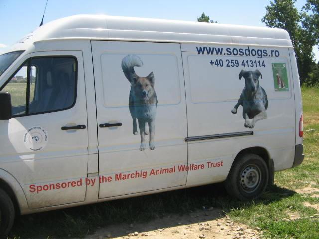 (*) Sokak Hayvanları için Örnek Bir Proje
