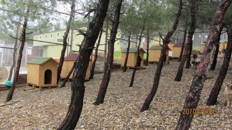 Haytap 2013 Takvim Geliri Kahramanmaraş Bakımevi İçin Tel Çit ve Paletler