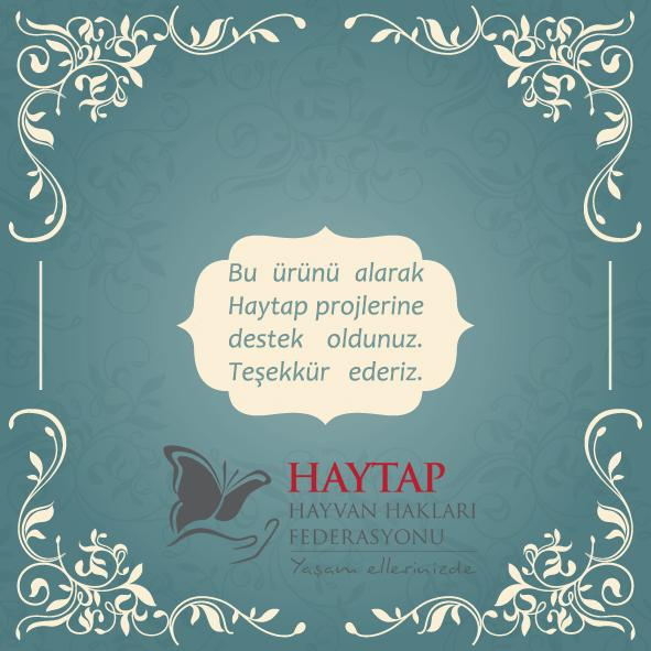 Help Stray Animals by Buying Chocolate from Haytap!