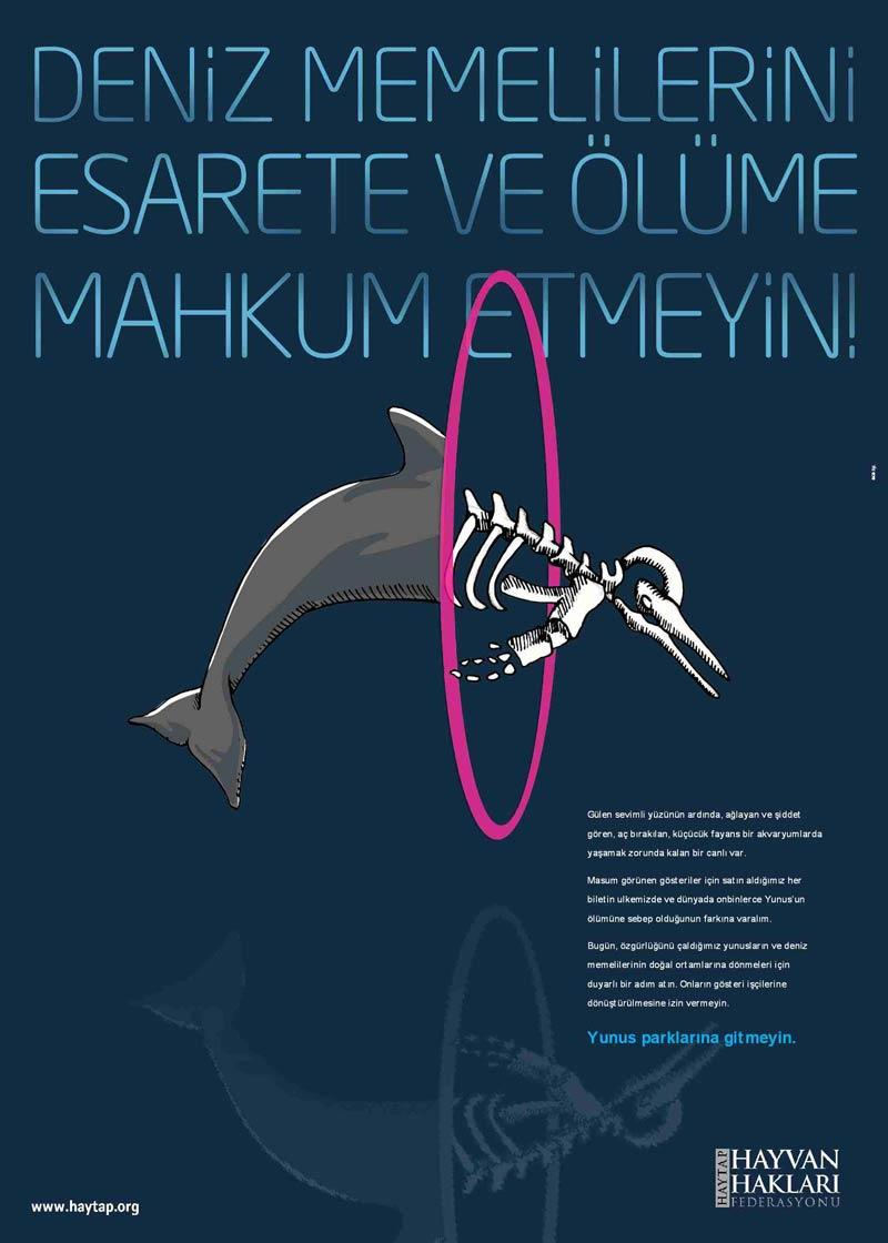 Özgür Yunuslar İçin HAYTAP- Greenpeace- Doğa Derneği  Suadiye Sahilinde