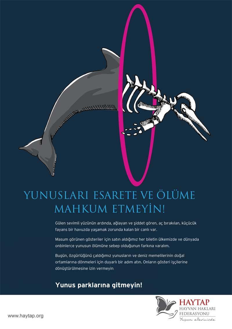 Yunus Parklarını Protesto Ediyoruz !